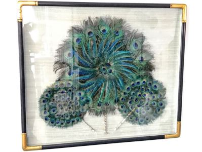 Shadow Box Framed Set Of (3) Vintage Peacock Fans
