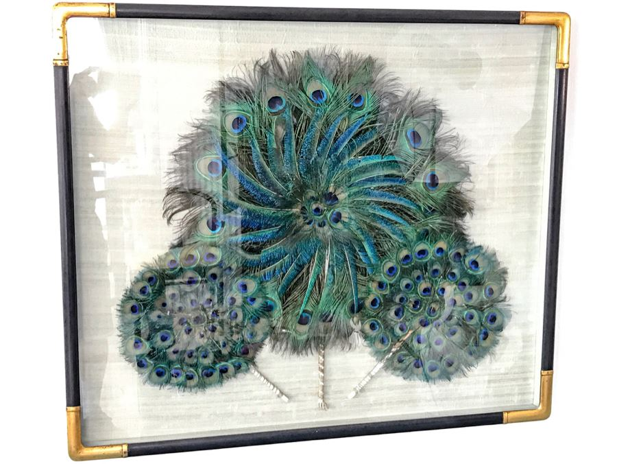 Shadow Box Framed Set Of (3) Vintage Peacock Fans [Photo 1]
