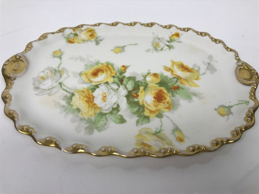 Limoges Coronet France Hand Painted Oval Plate