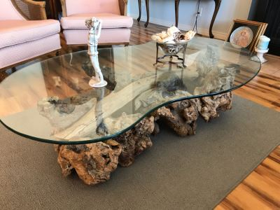 Mid-Century Driftwood Coffee Table With Kidney Shaped Glass Top