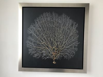 Coral Print Wall Artwork In Silvered Wooden Frame 28 X 28