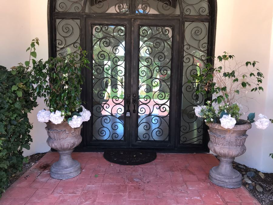Pair Of Monumental Cast Cement Urn Planters With Ficus Trees 3'H X 2'R [Photo 1]