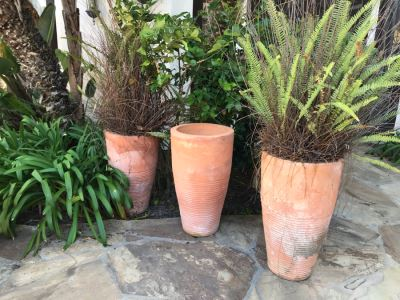 (3) Large Terracotta Tapered Cylindrical Planters Pots - Two With Ferns 27'H X 16'W