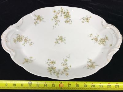 Hand Painted Limoges Bassett Austria Oval Serving Platter