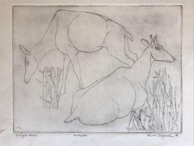 Vintage 1976 Ruth Osgood Unique Print Titled 'Antelope' 12 X 9 (JKE)