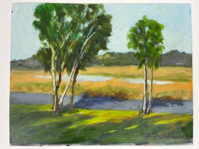 Original Plein Air Painting Of Buena Vista Lagoon In Carlsbad / Oceanside By Local California Impressionist Artist David Rickert (One Of His First Plein Air California Paintings) 11 X 14