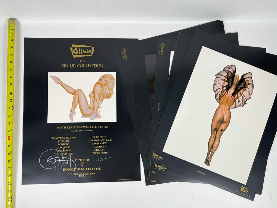 Signed Olivia de Berardinis The Pin-Up Collection Limited Edition Portfolio #2525/4000 (Robert Bane Edition, 1993) Eleven 16' X 20' Color Plates Total Plus Signed Cover Plate (Missing One Plate) 12 Plates Total - See Photos [Photo 1]