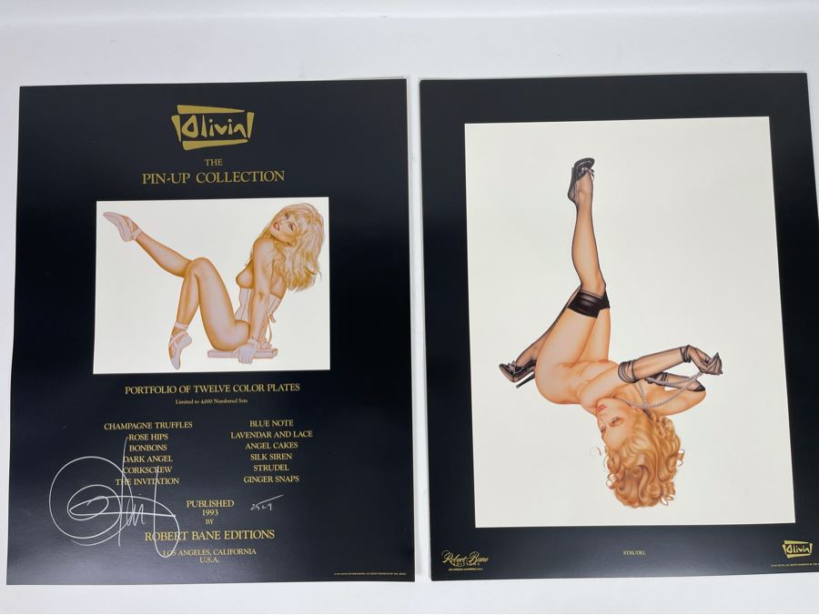 Signed Olivia de Berardinis The Pin-Up Collection Limited Edition Portfolio #2525/4000 (Robert Bane Edition, 1993) Eleven 16' X 20' Color Plates Total Plus Signed Cover Plate (Missing Six Plates) 7 Plates Total - See Photos [Photo 1]