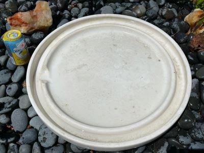 Gainey Ceramics Saucer Laverne California Pottery 20.5W