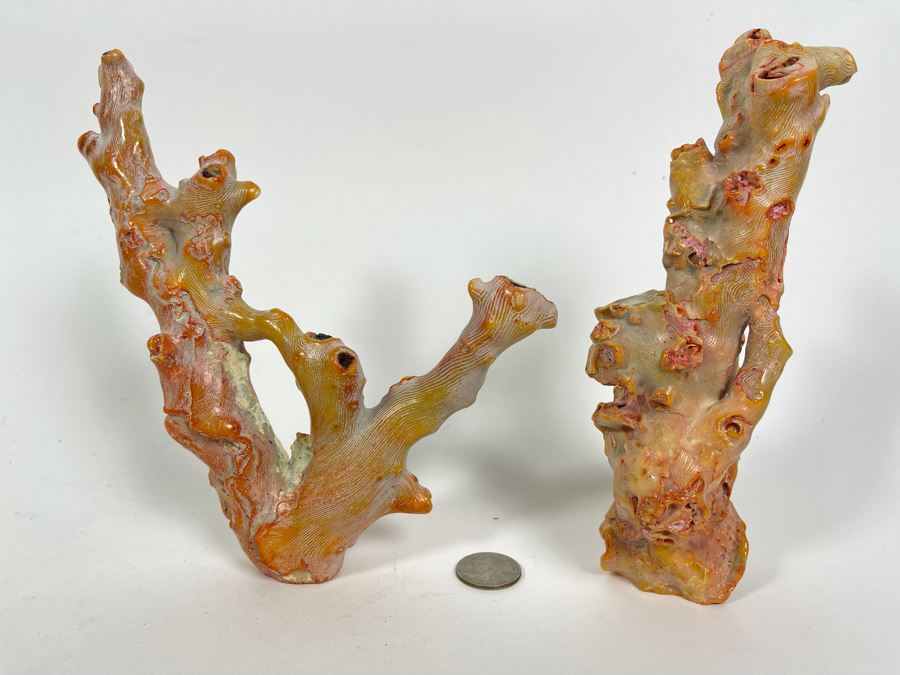 Pair Of Real Organic Pink Coral Sculptures Pieces